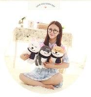 חתיכה אחת אקיטה כלב קטן חמוד בפלאש צעצוע מתנת בובת אקיטה כלב חמוד יפה שומן יושב על 25 ס