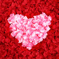 De la sede Artificial de Rose Petals 1000 unids/lote Decoraciones Del Banquete de Boda de la Muchacha de Flor 12 Colores pétalo de la boda sólo US $0.0026/piece