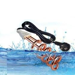 00 venda chuveiro elétrico mini aquecedores de água elétrica multifuncional instantânea calor 1500w 220v marca garantia segura para uso doméstico