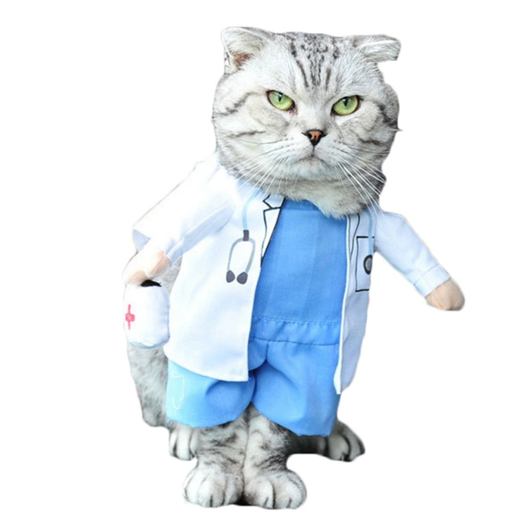 Funny Dog And Cat Costumes