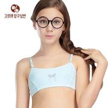 on Girl Undergarment