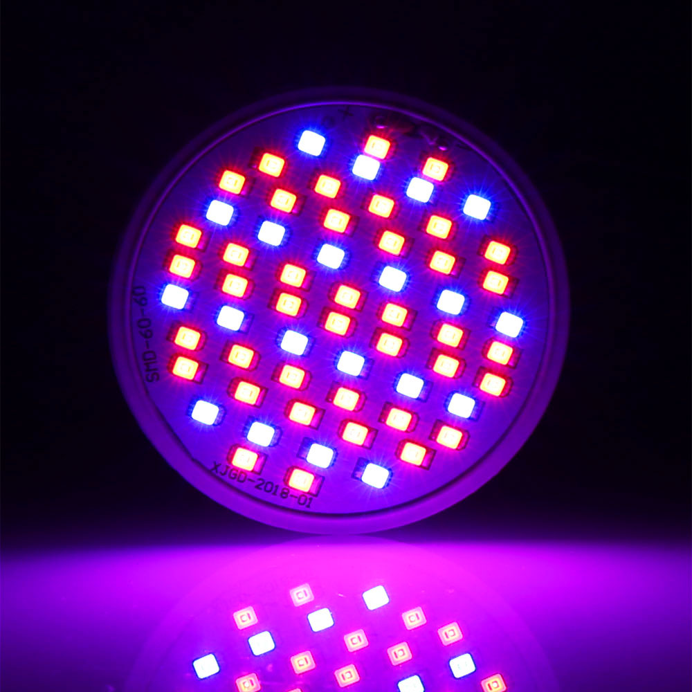 4 pçs lote led crescer luzes 5
