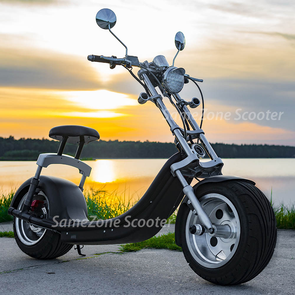 MOST popular citycoco electric scooter fat tire bike 1200W for rent or tourist gliding