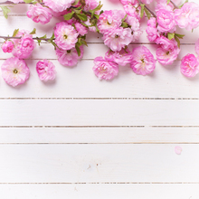 Newborn baby flower photography backdrop background printed with peach blossom and white plank wood floor D-9599