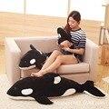 50cm Black and white Killer Whale down cotton elastic super soft plush toys doll  birthday gift
