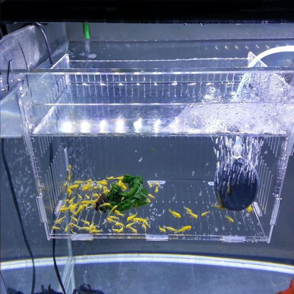Freshwater aquarium fish breeding - Aliexpress Com Buy Acrylic Aquarium Isolated Cases Aquarium Supplies Fish Breeding Boxes Simple Lattice With Cover From Reliable Fish Breeding Box
