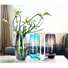 Modern Creative colorful  glass vase transparent bottle hydroponic containers flowerpot wedding Home Decoration plant