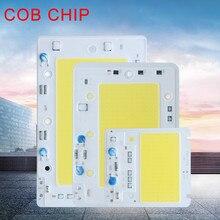 Hight Power LED COB Chip 50W 100W 150W LED Lamp Bulb 220V 110V Waterproof IP65 Light Chips Smart IC For DIY Spotlight Floodlight