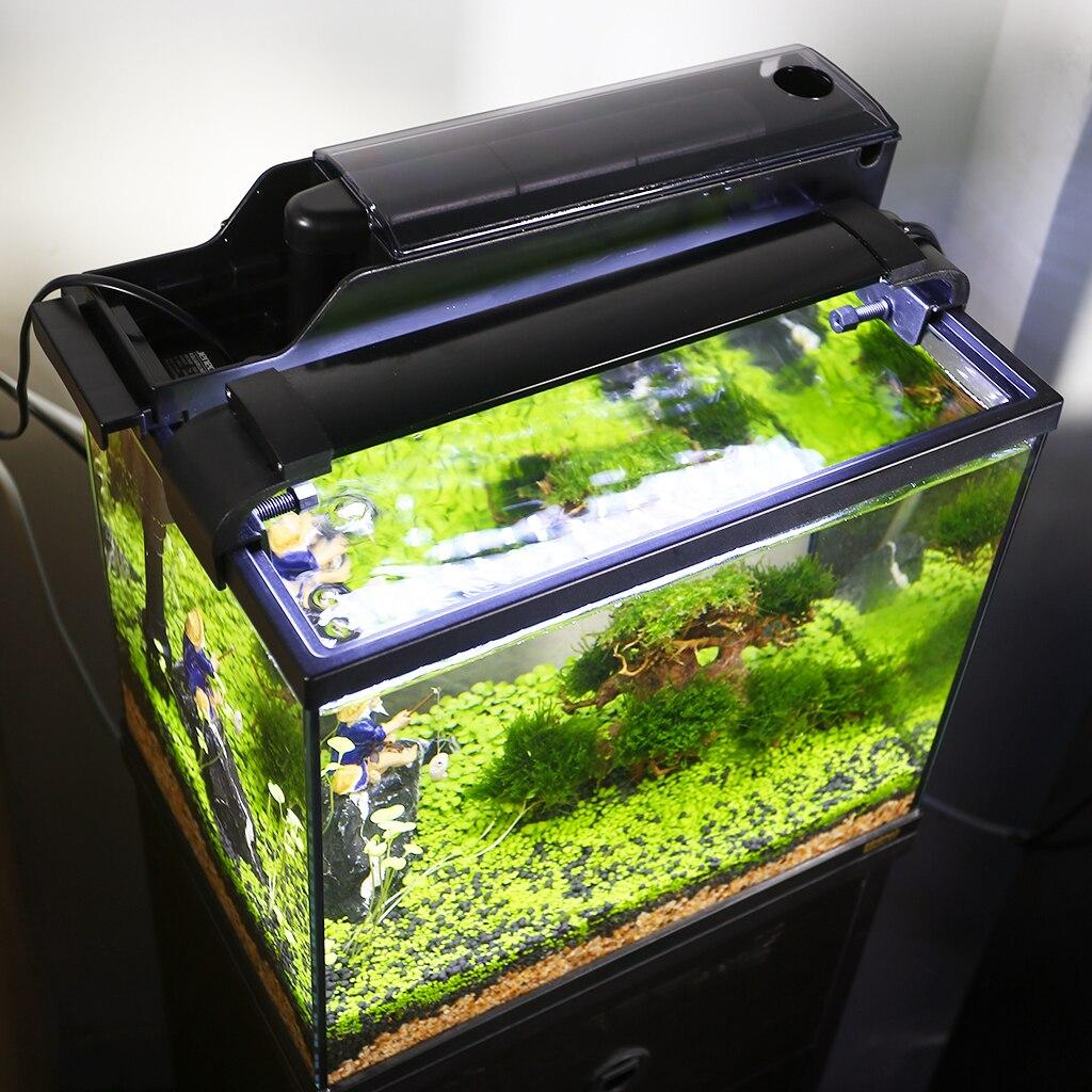 Aquarium Aquarium 3 en 1 Kit Aquarium avec Aquarium en verre, filtre et affichage de lumière LED - 6