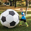 Giant-Inflatable-Football-Ball-130cm-5