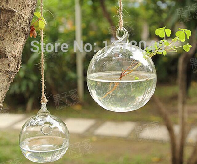 Superieur 4 Pieces 10cm Round Globe Hanging Water Planters,water Culture Green Plant  For Indoor Garden
