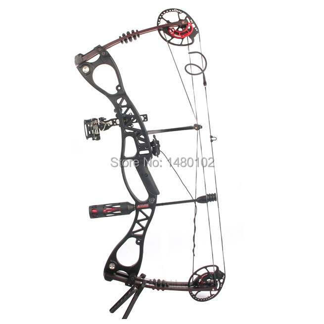 Hunting and shooting Bow Set, M122 Caesar Compound Bow for human outdoor hunting,China Archery Set