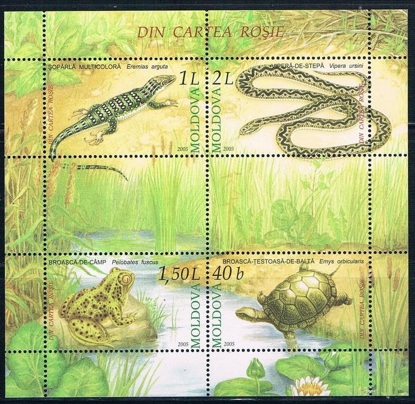 MD0090 Moldova 2005 reptile 1MS new 1201
