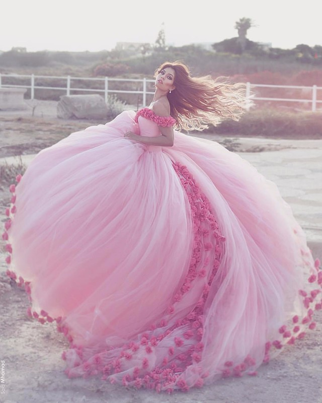 Anime Ball Gown White With Red Roses: 2017 Saudi Ahamad Pink 3D Flora Appliques Quinceanera