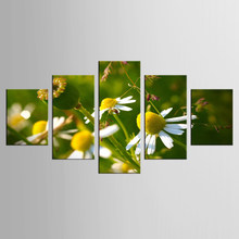 5 pieces/set Canvas Wall Art Panel HD Printed Yellow Flower Painting Canvas Print Home Decor Print Poster Picture Canvas(China)