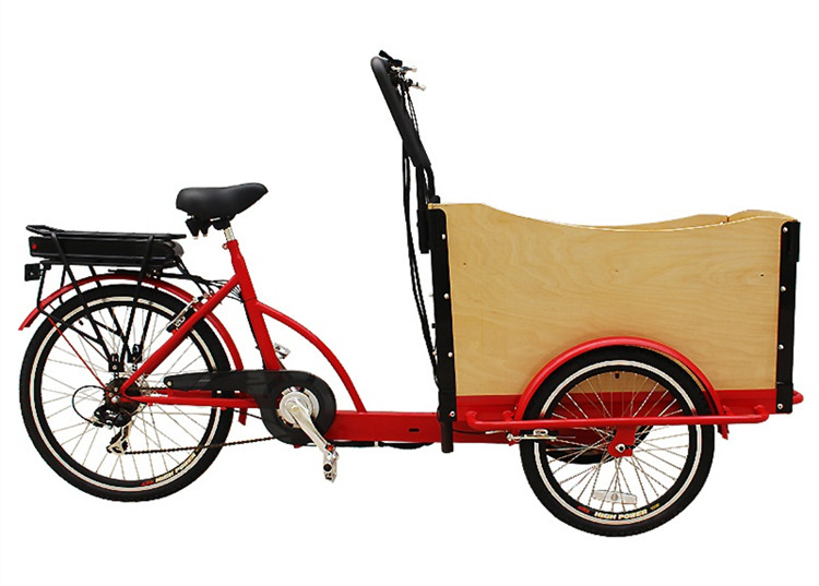 3-wheels-electric-cargo-bike-with-CE (4)_