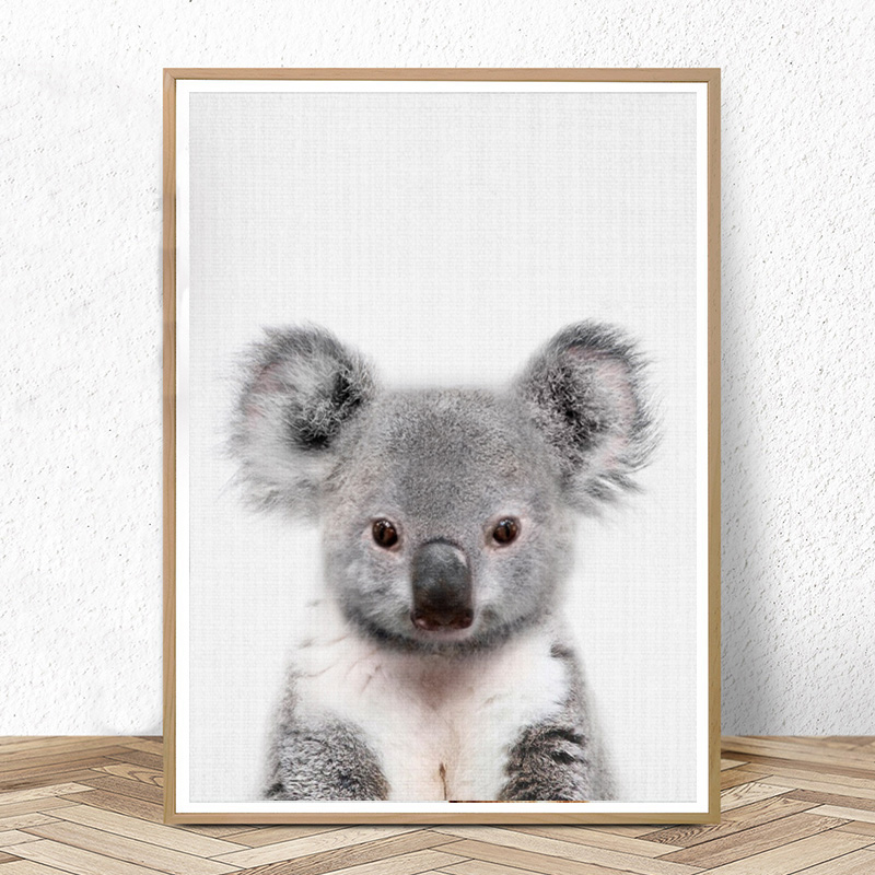 Baby Koala Print Australian Animal Nursery Wall Art Peekaboo Canvas Painting Animals Posters And Prints Kids Bedroom Decor