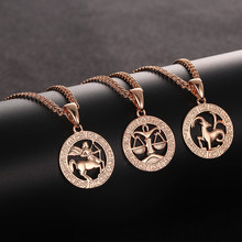 FJ 12 Zodiac Sign Womens Mens 585 Rose Gold Color Constellation Pendants Pisces/Aquarius Curb Necklace Chain(China)
