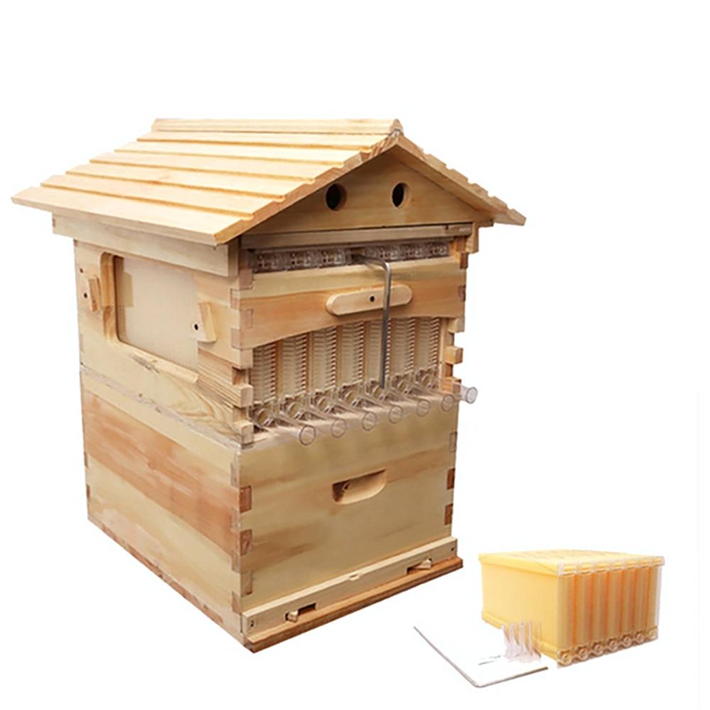 En bois Abeille Ruche Boîte Avec 7 Cadres De Ruche Outils D'apiculture Miel Auto-Coulant Ruche Fournitures Équipement D'apiculteur