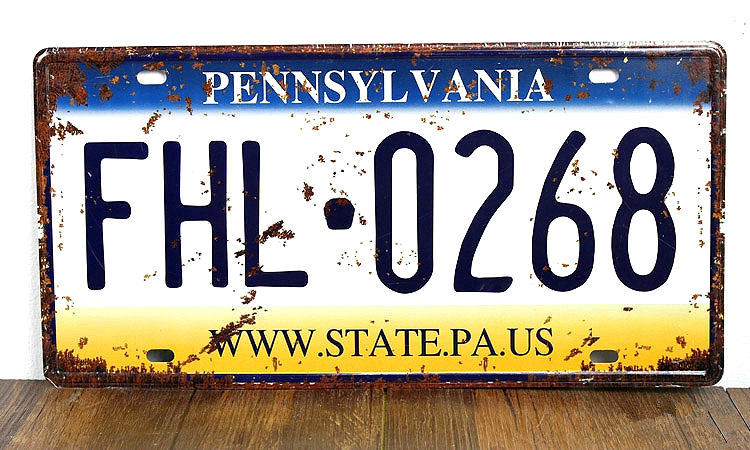 SP-CP-0159 Car License Plates number About  FHL-0268  Retro Vintage Metal tin signs Wall art craft painting 15x30cm
