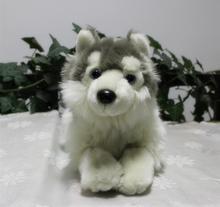 Car Toy  Pillow  Husky Doll  Plush Toys  Simulation Dog  Lovely Papa Dog  Dolls Children Gift