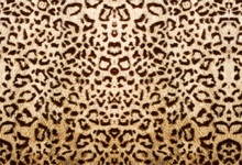 Laeacco Leopard Pattern Woolen Blanket Baby Children Portrait Photography Background Wall Photographic Backdrop For Photo Studio цена