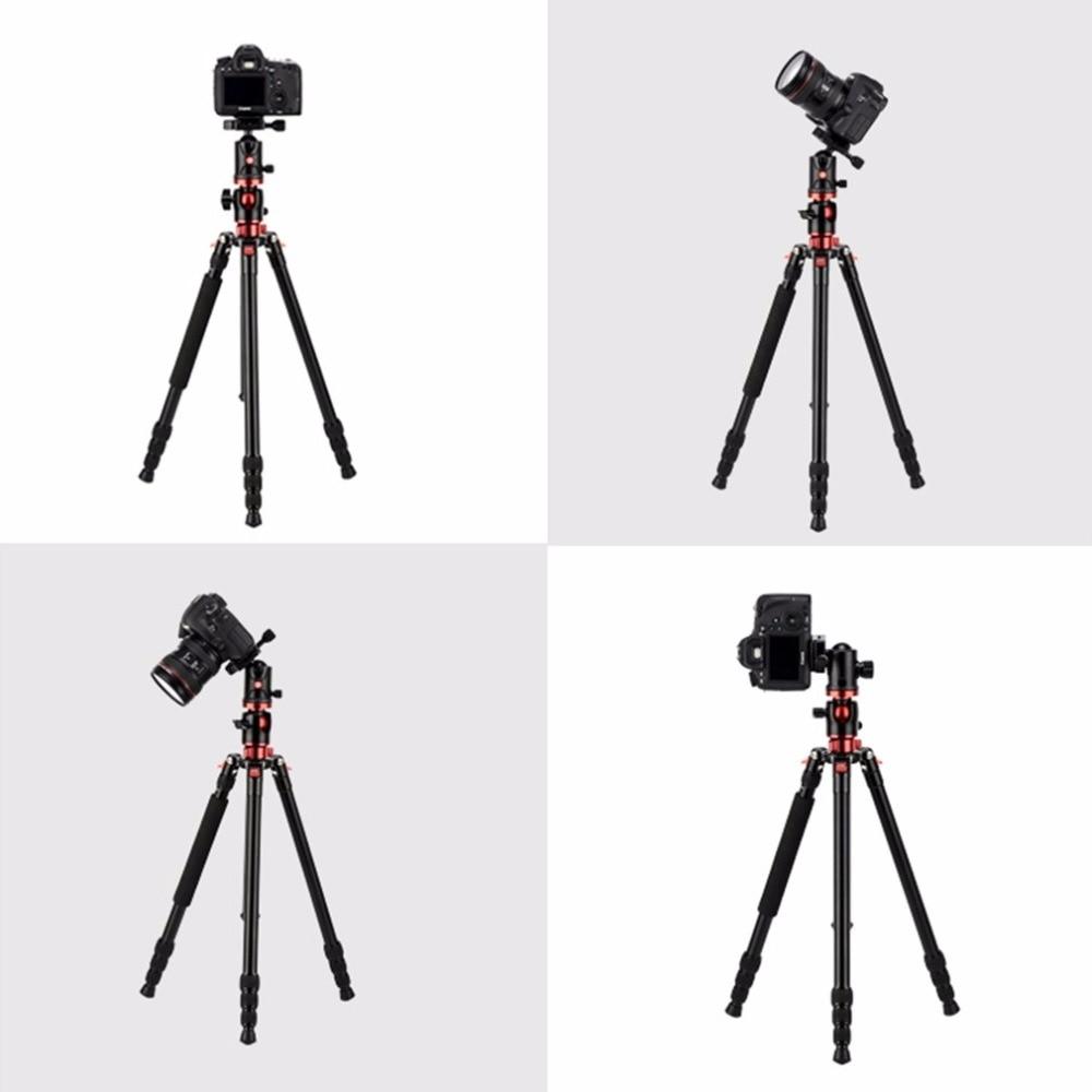 ZOMEI M8 Professionnel Caméra Portable Compact Trépied En Aluminium Manfrotto Avec Rotule Non-slip En Caoutchouc Pour Appareil Photo REFLEX NUMÉRIQUE