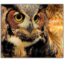 5D Diy Diamond Painting Cross Stitch Pretty Cute Owl Needlework 3D Embroidery Full Round Mosaic Decoration Resin Sticker