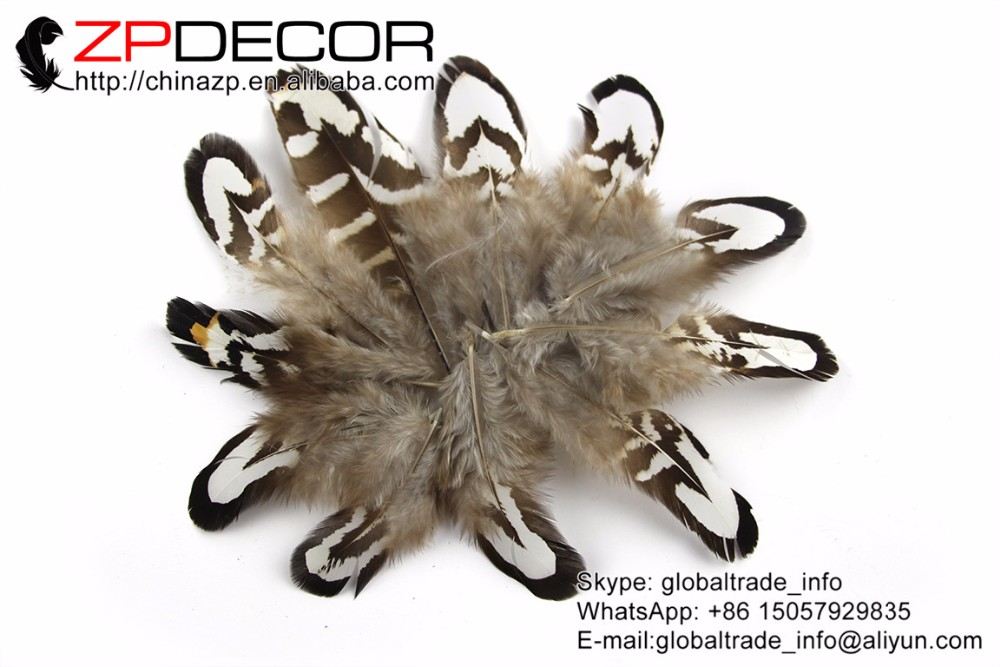 Tiny Black and White Reeves Venery Pheasant Plumage feathers (4)