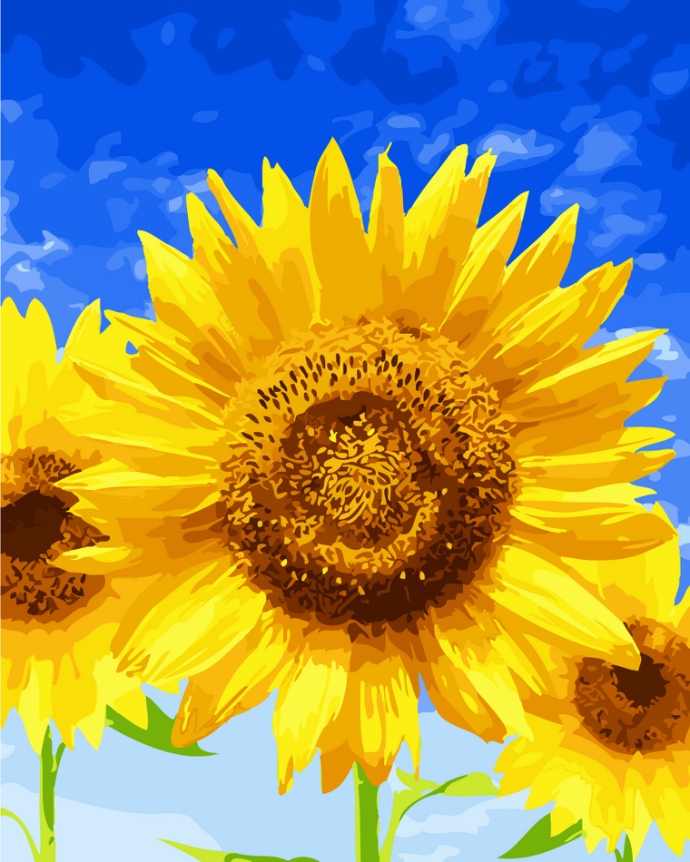 Sunflower sky DIY Coloring Oil Painting 2017 By Numbers ...