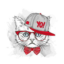 Iron On Patch Cat With Hip-Hop Hat Washable Clothes Decoration Print T-Shirt New Design Diy Accessory Parches Para La Ropa