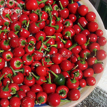 Large Red Cherry Sweet Pepper, 20 seeds, tasty organic vegetables E3912