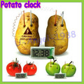 free shipping! Potato Clock Novel Green Science Project Experiment Kit kids Lab Home School Toy