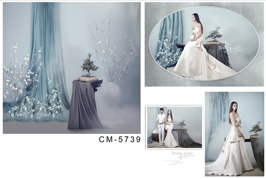 Customize vinyl cloth print dancer curtains room wallpaper photo studio background for portrait photography backdrops CM-5734 customize vinyl cloth print 3 d night city scenery wallpaper photo studio background for portrait photography backdrops cm 5883