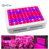 Full Spectrum Double Chips Led Grow Lights Panel Hydro Vegetable Lights Indoor 1000W Garden Green House