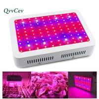 Full Spectrum Double Chips Led Grow Lights Panel Hydro Vegetable Lights Indoor 1000W Garden Green House