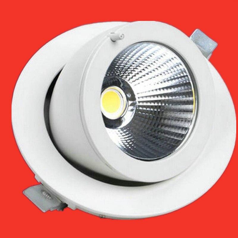 En gros COB LED 15 W 20 W 25 W 30 W 40 W 50 W projecteur LED éclairage intérieur encastré Downlights chaud froid blanc AC85-265V gratuit