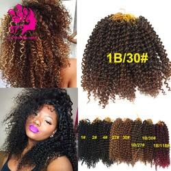 Havana mambo twist crochet braid hair 10 100g pack freetress crochet braid marley senegalese twists crochet.jpg 250x250
