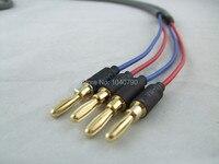 Profesyonel muz fişler ses hattı Etrafında Hoparlör kablosu güç amplifikatör boynuz hattı hattı 2 M 6.4ft