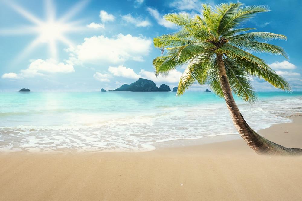 HUAYI Background Beautiful Beach Scenery Photography