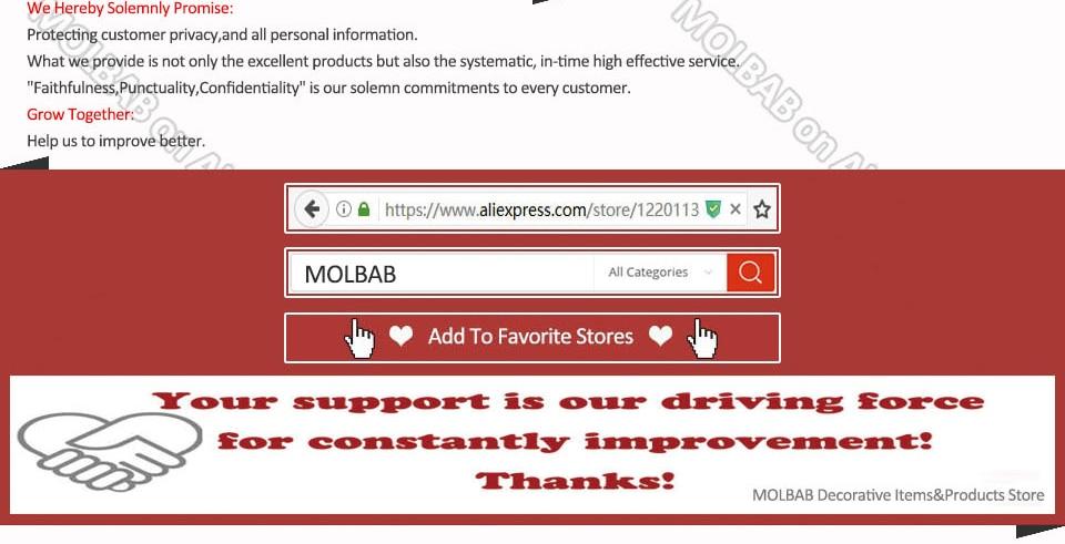MOLBAB--SMT_04