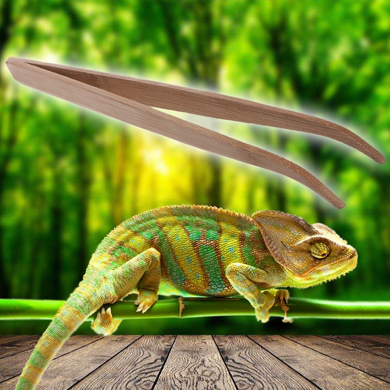 Long Super Reptile Wood Tweezers Clips 28 Cm And 16.5 Cm Size Frog Spider Tool Litter Terrarium Cleaning And Feeding
