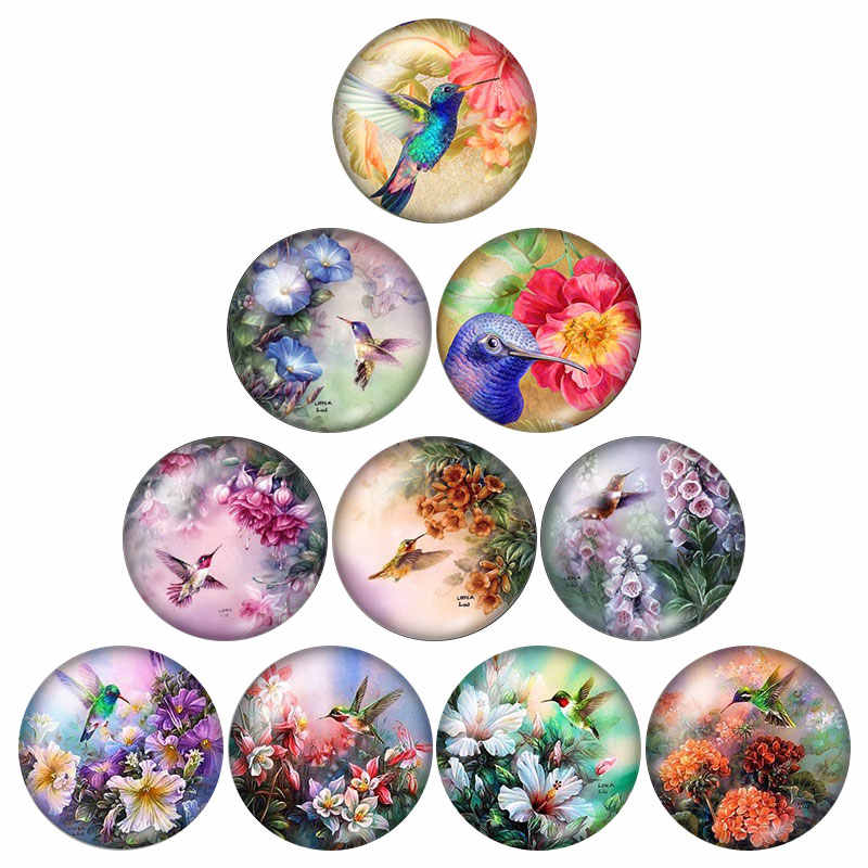 New Beauty Birds Hummingbird 10pcs mixed 12mm/16mm/18mm/25mm Round photo glass cabochon demo flat back Making findings ZB0574