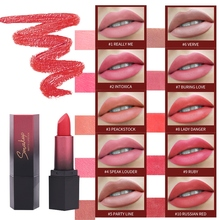 Hot Sale Matte Lipstick Long-Lasting Waterproof Non-Stick Cup Easy To Color Velvet