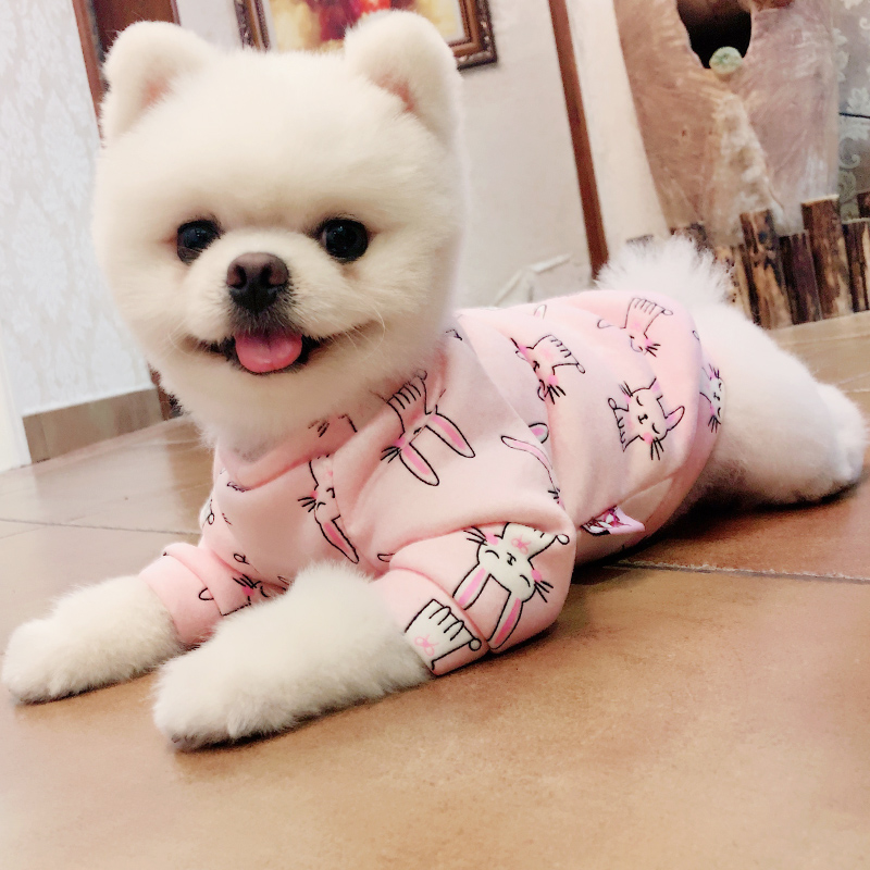 Pomeranian dog clothes xs (21)