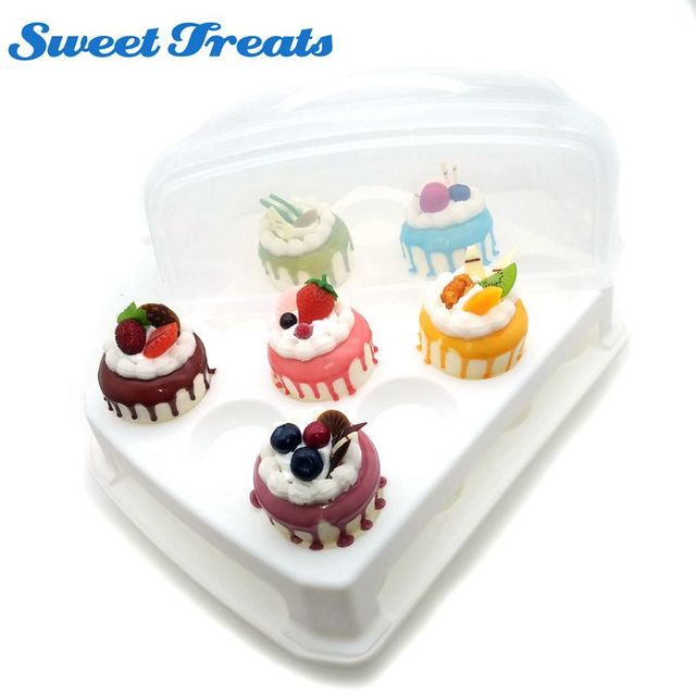 Cupcake Carrier 2 Layer Cake Courier Caddy Pastry Treats Portable
