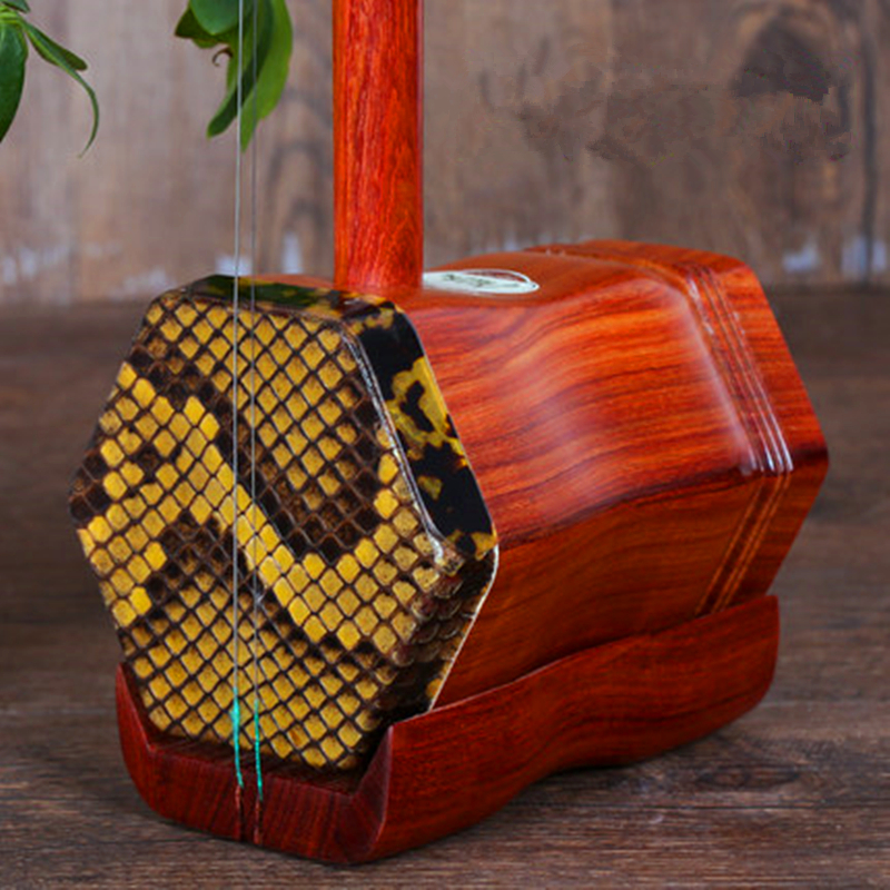 Chinois Erhu Folk Instrument à Cordes Huqin Strik Muziek rouge sandale bois Instruments de Musique Professionnel Musique Erhu Accessoires