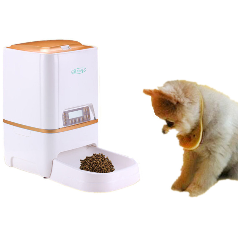 automatic timed feeder pet