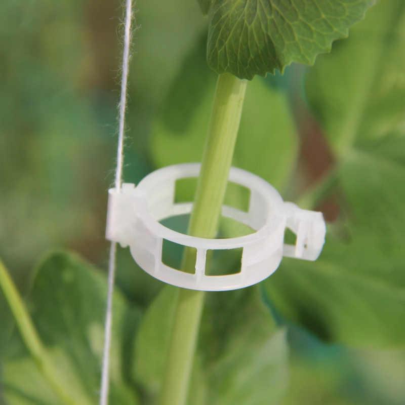 50 قطعة مقاطع الطماطم تعريشة حديقة النبات زهرة الخضار الموثق خيوط النبات دعم الدفيئة كليب الإمدادات