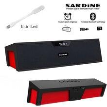 Big power 10W Sardine HIFI portable wireless bluetooth Speaker Stereo Soundbar TF FM radio subwoofer column